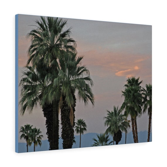 Palm Desert Sunset Canvas Gallery Wraps