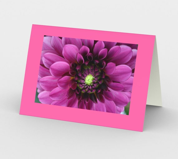 Dahlia Beauty - 3 in a set with Envelopes!