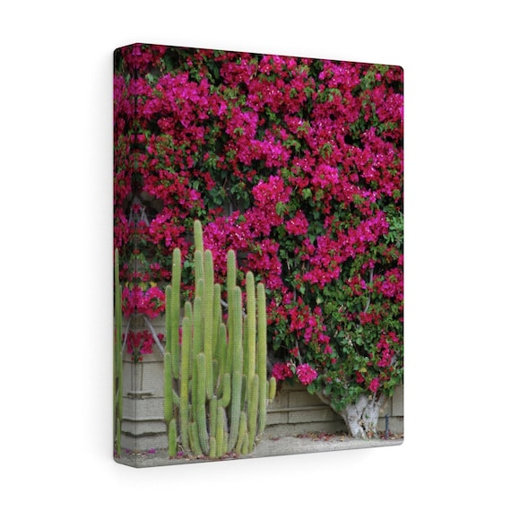 Palm Desert Blooms Canvas Gallery Wraps