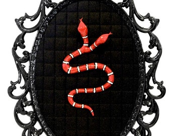 Two Headed Snake - Victorian Framed Object - Wall Art Decor 7x10in