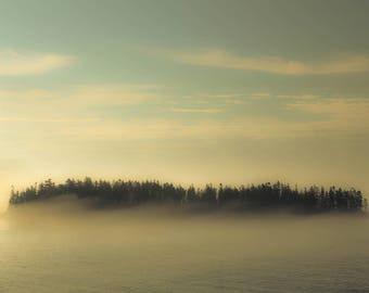 The Island, Islands, Trees, Maine, Water, Fog, Coast of Maine, Nautical, Color Photography, Landscape, Gold, Blue, Soft Colors