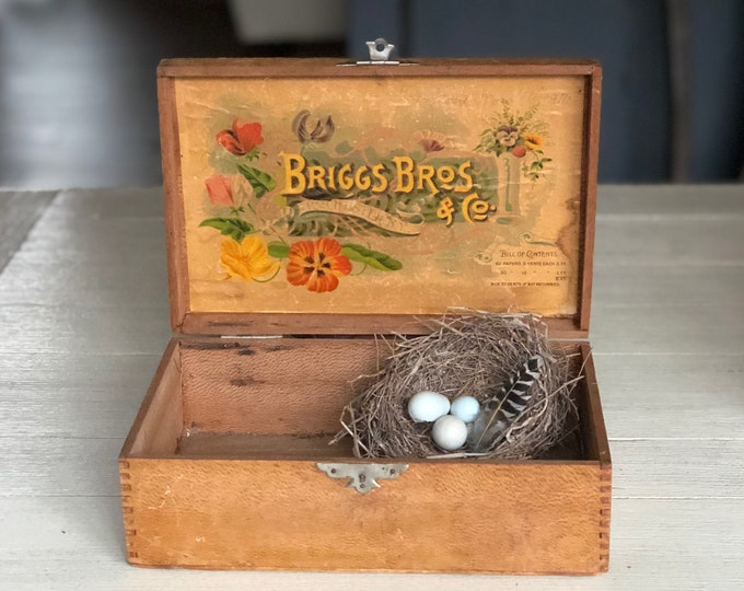 Vintage Flower Seed Box Briggs Bros. & Co. Color Litho