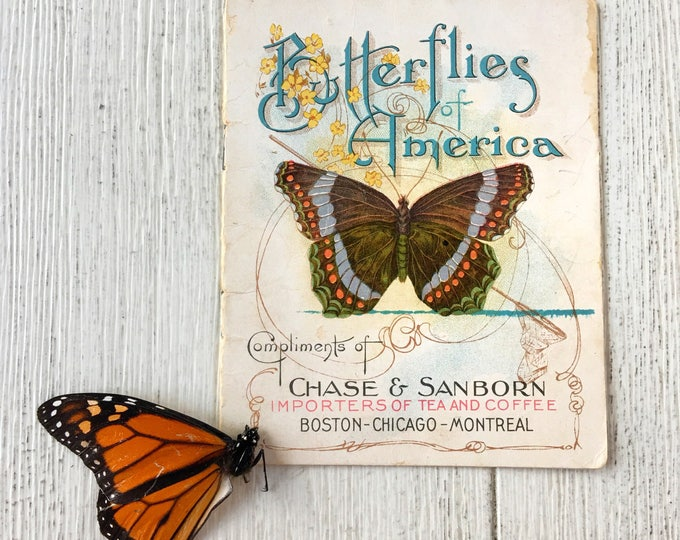 Butterflies of America Vintage Chase Sanborn Booklet 1900