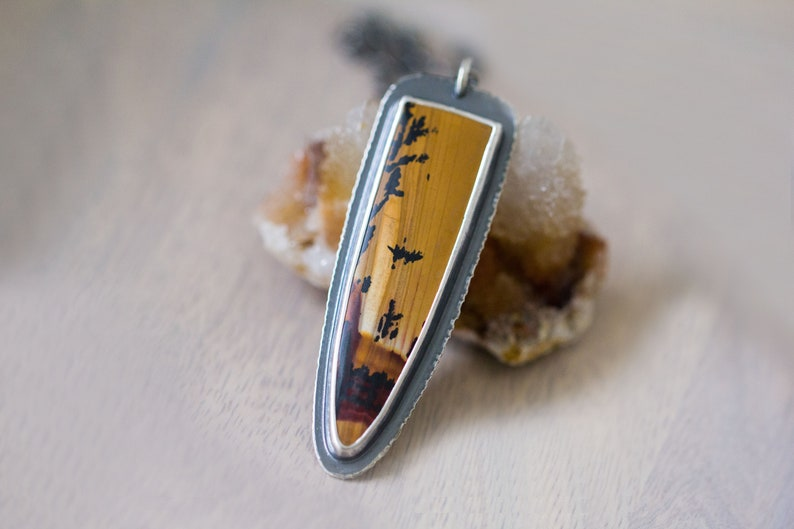 Indian Paint Picture Jasper Necklace in Sterling Silver  image 0