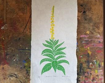 Great Mullein original botanical linocut print. Verbascum thapsus on handmade Nepalese lokta paper