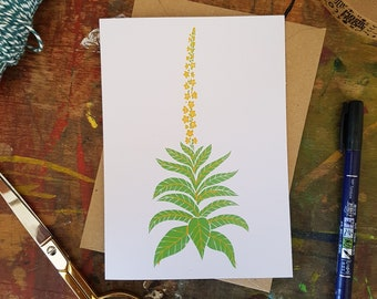 """Great Mullein Verbascum thapsus linocut 7x5"""" recycled greetings card"""