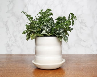 White Ceramic Planter - Indoor Planter - White Planter Pot with Drainage Hole and Saucer