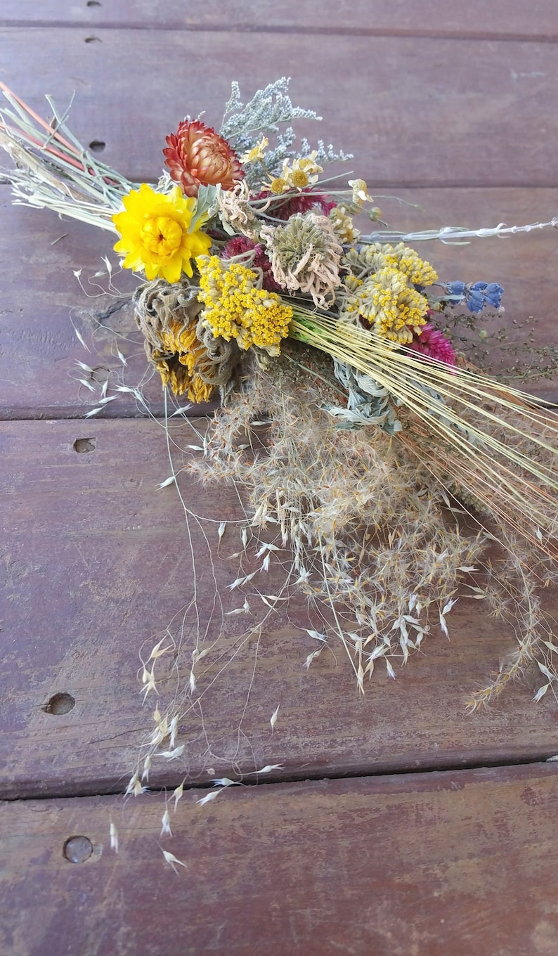 Nature's Bounty Dried HerbHome Decor Dried Floral image 0