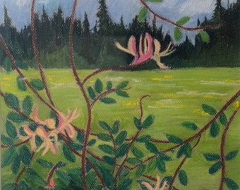 Original landscape pastel Honeysuckle