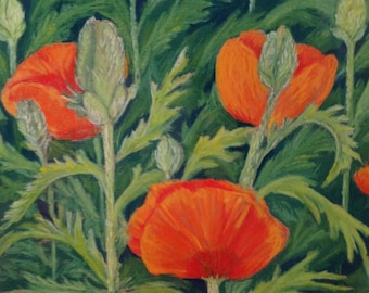 Original pastel Poppies