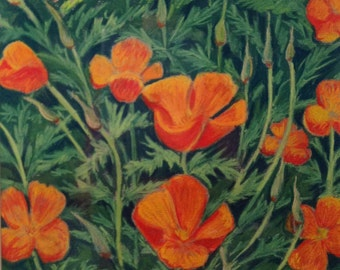Original pastel california poppies