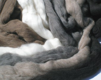The Shetland Collection Combed Top Wool for Spinning or Felting  10 oz.