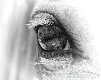 Horse art Black and white horse photography horse eye Large Horse art for girls room rustic decor bedroom horse gift for horse lover gifts