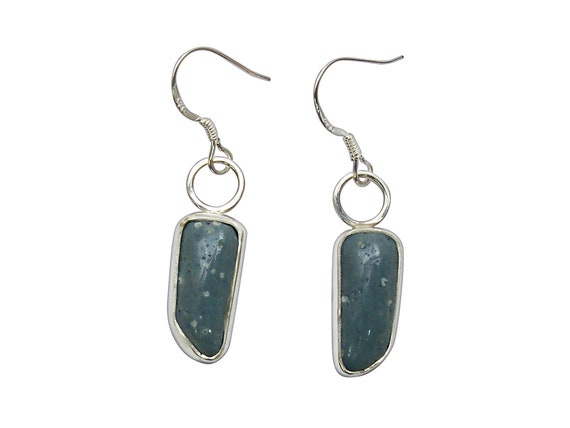 Leland Blue Stone and Sterling Silver Dangle Earrings  elbsd3253