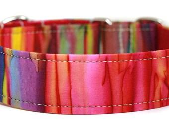 Rainbow Batik Dog Collar / Martingale Dog Collar / Custom Dog Collar