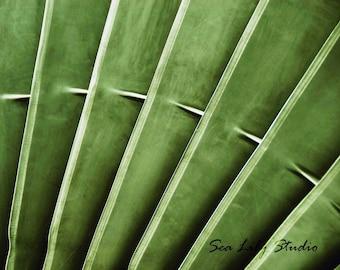 Turbine : plane photography jet engine green metal abstract industrial home decor 8x10 11x14 16x20 20x24 24x30