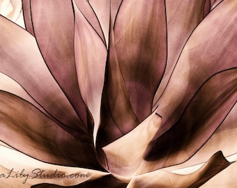 Agave Attenuata : agave photo desert photography succulent magenta brown tan abstract home decor 8x12 12x18 16x24 20x30 24x36