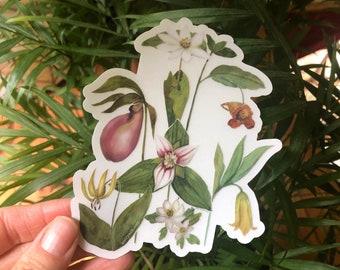 Blue Ridge Wildflowers, clear vinyl weatherproof sticker, decal, watercolor, bloodroot, pink lady slipper, trillium