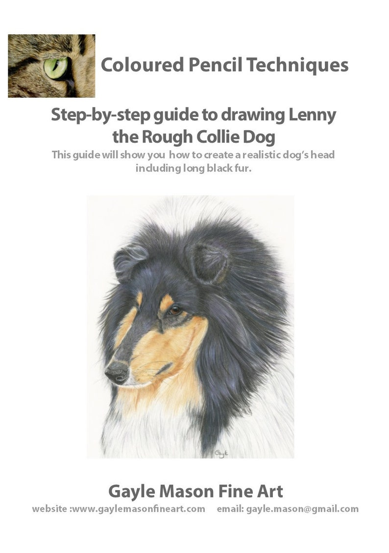 Step by Step Tutorial - Drawing a Rough Collie Dog in Coloured Pencils