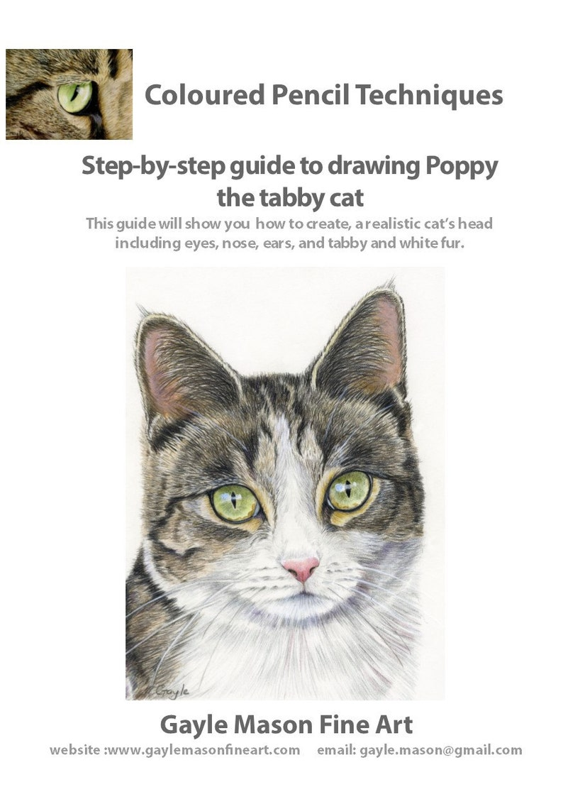 Step by Step Tutorial - Drawing a Tabby Cat in Coloured Pencils