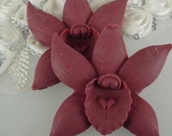 20% off: 662-00-CA  2pcs Pretty Phalaenopsis Cabochon- Wine