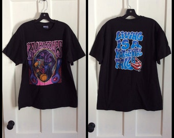 1990s the Black Crows 1993 Rock Band T-shirt size XL Remedy