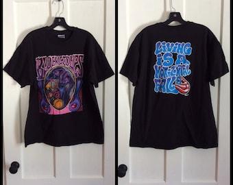Vintage the Black Crows 1993 Rock Band T-shirt size XL Remedy