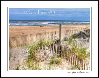 OBX NC North Carolina - Save The Dunes - obx Hatteras Island NC Beach - Rodanthe - Outer Banks -Fine Art Photography Print  by Janet Lynch