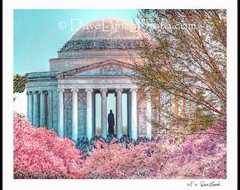 Thomas Jefferson Memorial - Cherry Blossom Festival - Washington DC  -  Art Photography Print by Richmond VA Photographer Dave Lynch
