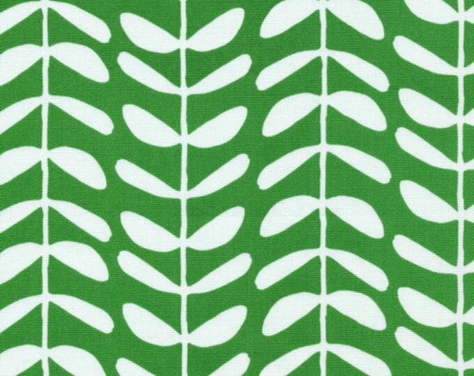 Organic CANVAS - Cloud9 Yoyogi Canvas - Vines Green Canvas