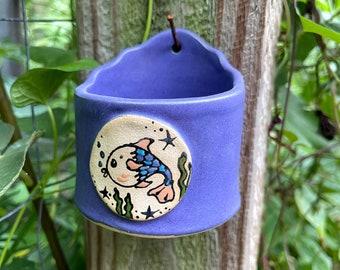 Hanging Pot: Here Fishy, Fishy