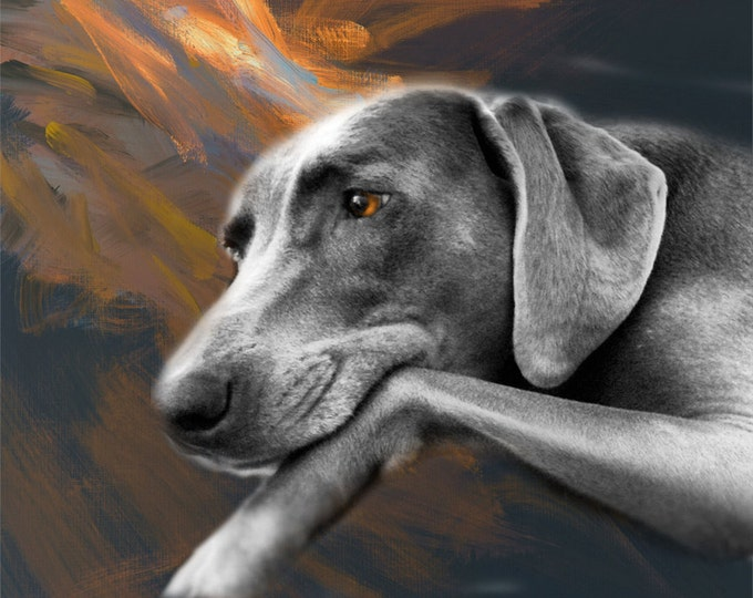 Custom Unique Gift Pet Oil Painting Pet Lover Wall Art Photo Canvas 16x20