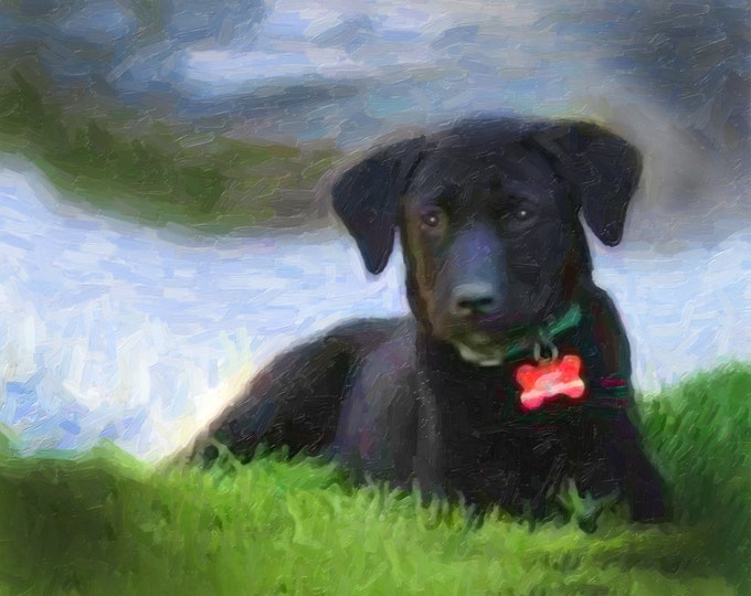 Puppy Portrait Gift Custom Oil Style Pet Painting on Canvas 16x20