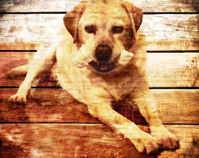 Custom Pet Portrait In Memory Of Best Friend Hunter Gift Outdoorsman Gift Pet Art Horse Cat Dog Pig Art Gift For Him Gift For Dad