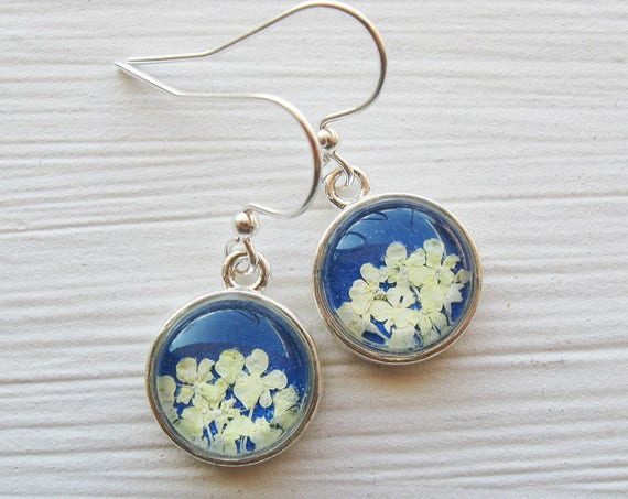 Real Pressed Flower Earrings - Tiny Round Real Queen Annes Lace Earrings - White and Cobalt Blue