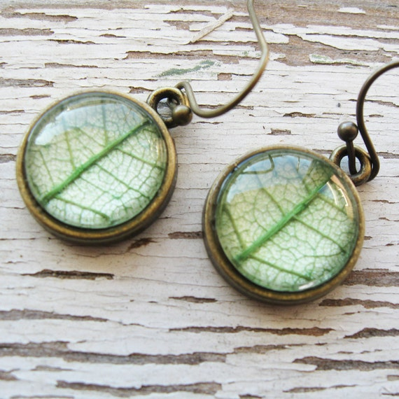 Real Botanical Earrings - Green and Brass Round Pressed Leaf Earrings