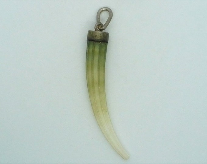 Natural Warthog Tooth Amulet Pendant Vintage Jewelry