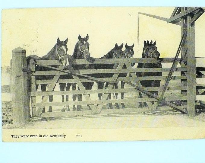 1907 Presbyterian Church Real Photo Vintage Postcard Posted RPPC