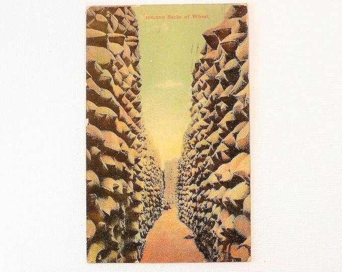 1909 Between the Walls of 100,000 Sacks of Wheat Grown Northwest Union Oregon Postcard Posted