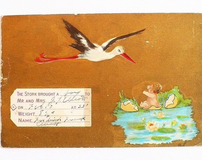 1910 Birth Announcement Stork Baby Hatching From Egg Embossed Vintage Postcard Posted