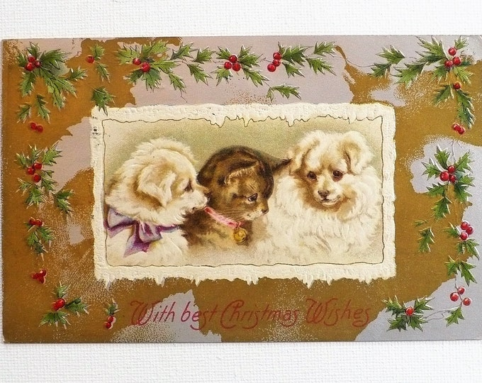 1910 With Best Christmas Wishes Kitten Puppies Holiday Embossed Vintage Postcard Posted