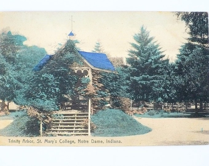 1908 St Mary's Women's College Trinity Arbor Notre Dame Indiana Vintage Postcard