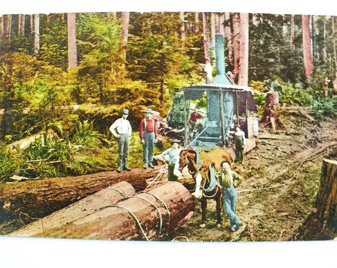 1909 Loggers Steam Powered Logging Winch Vintage Postcard Posted