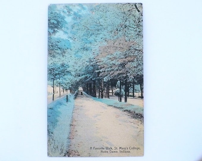 1908 St Mary's Women's College Favorite Walk Notre Dame Indiana Vintage Postcard