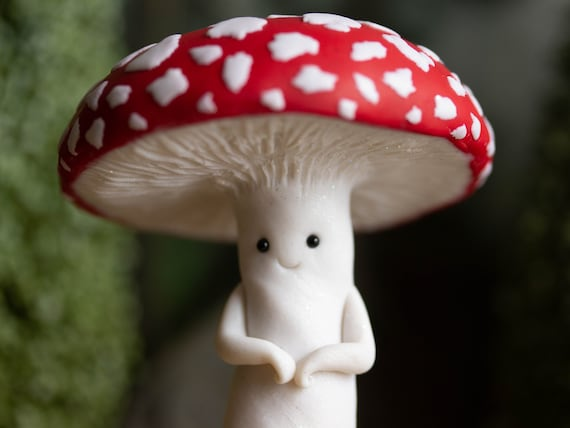 Mushroom Person - Amanita Muscaria - Fly Agaric Friend