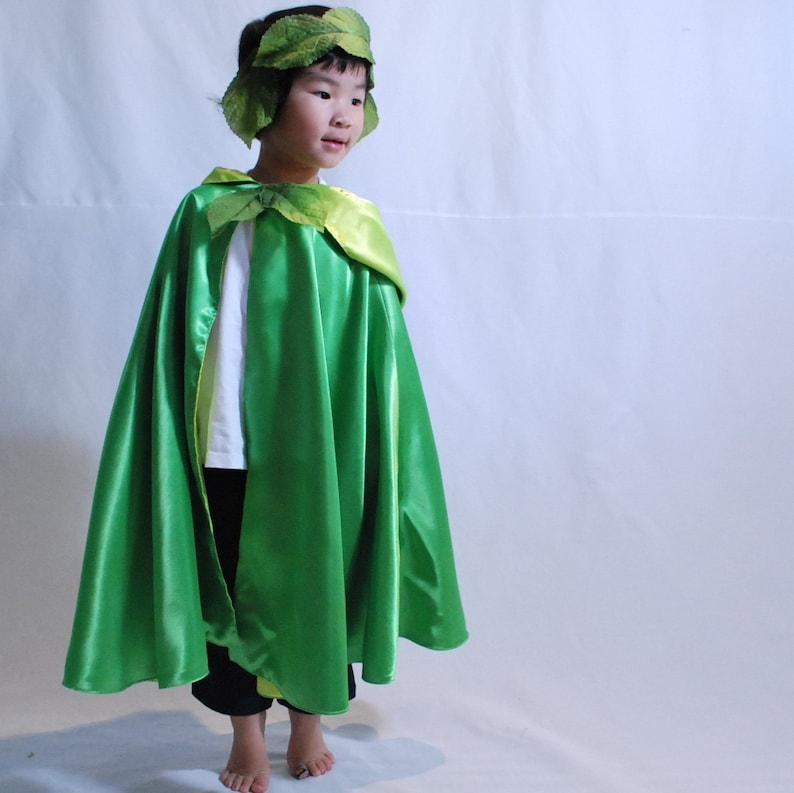 Fairy Princess Cape Tinkerbelle image 0