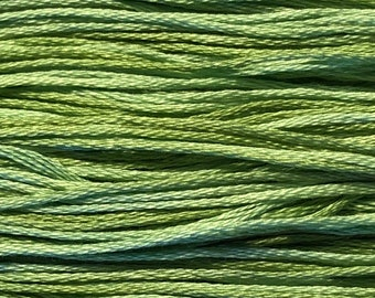Weeks Dye Works, Meadow, WDW-2176, 5 YARD Skein, Hand Dyed Cotton, Embroidery Floss, Counted Cross Stitch, Embroidery, PunchNeedle