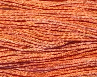 Weeks Dye Works, Sockeye, WDW-2249, 5 YARD Skein, Cotton Floss, Embroidery Floss, Counted Cross Stitch, Hand Embroidery, PunchNeedle