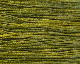 Weeks Dye Works, Grasshopper, WDW-2205, 5 YARD Skein, Hand Dyed Cotton, Embroidery Floss, Counted Cross Stitch, Embroidery, PunchNeedle