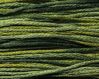 Weeks Dye Works, Lucky, WDW-4111, 5 YARD Skein, Hand Dyed Cotton, Embroidery Floss, Counted Cross Stitch, Embroidery, PunchNeedle